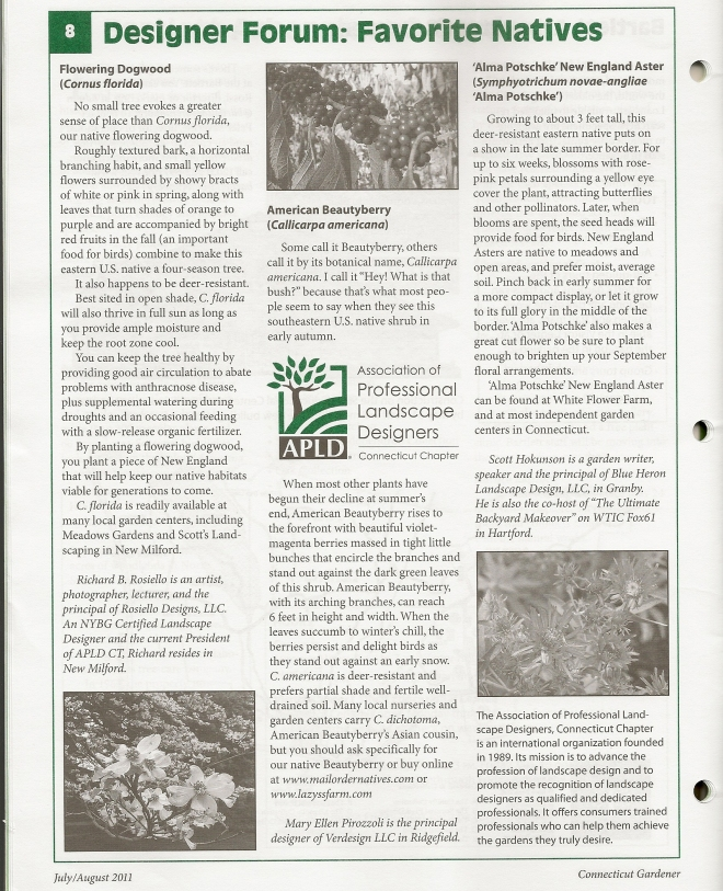 Designer Forum article in Connecticut Gardener magazine