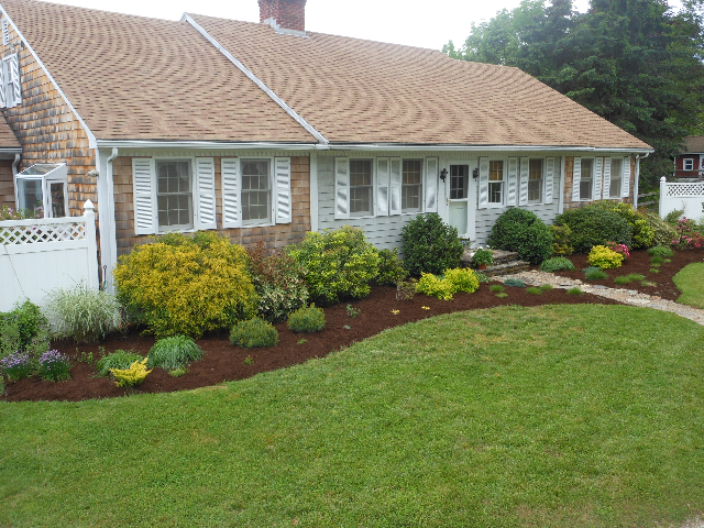 rejuvenating foundation plantings APLD Connecticut Chapter